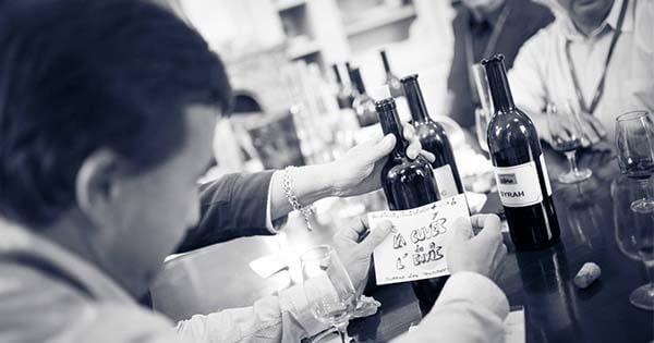 wine team building, activitate de toamna imagine